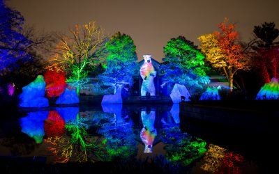 Philly Zoo Embraces the Festive Spirit with LumiNature