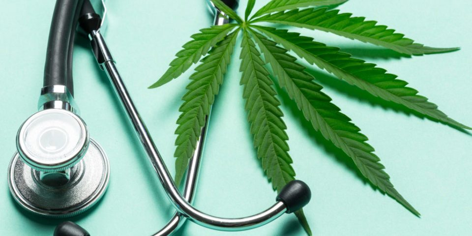 Medical Marijuana – Florida's current gold rush