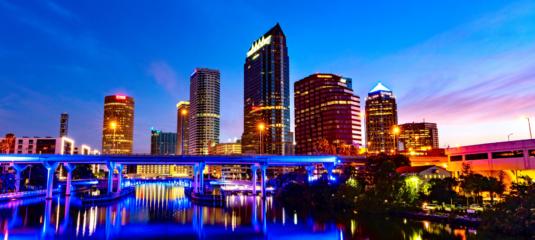 Tampa article